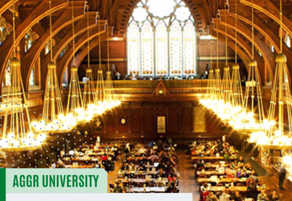 Що відрізняє університети Ліги Плюща від інших американських навчальних закладів?